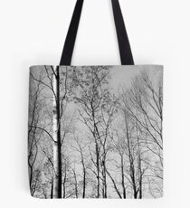 The Forest Lou Campbell State Nature Preserve Tote Bag