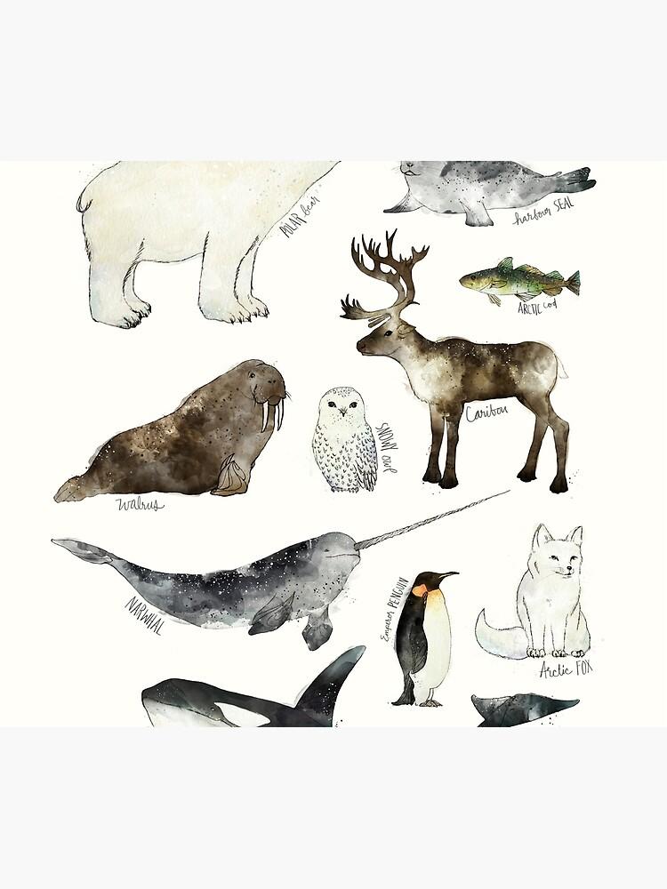 Animales árticos y antárticos de AmyHamilton