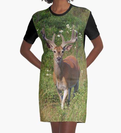 Fenceline Buck Graphic T-Shirt Dress
