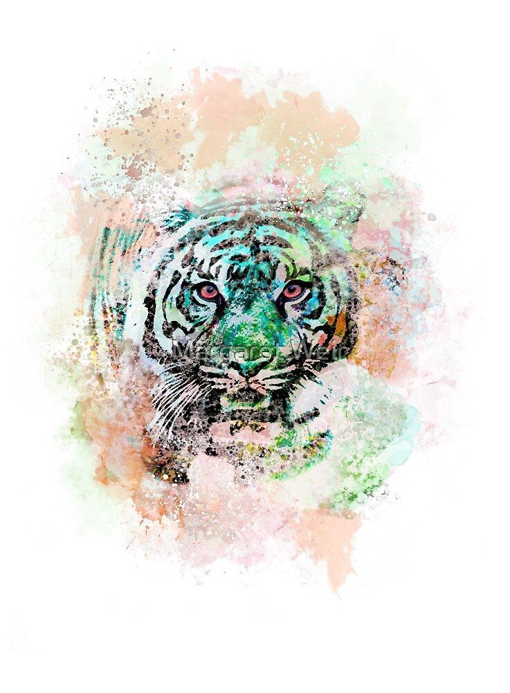Tiger Tiger by Margaret Weir