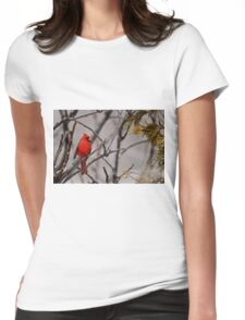 Male Northern Cardinal - Ottawa Ontario Womens Fitted T-Shirt
