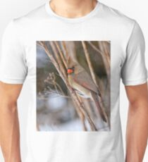 Female Northern Cardinal - Ottawa Ontario Unisex T-Shirt