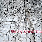 Merry Christmas, Snow Branches by debbiedoda