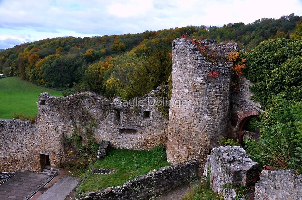 The Ruin: Burg Rötteln by Gayle Dolinger