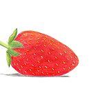 Strawberry Illustration  by daphsam