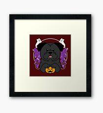 Licorice the Black Pug Framed Print