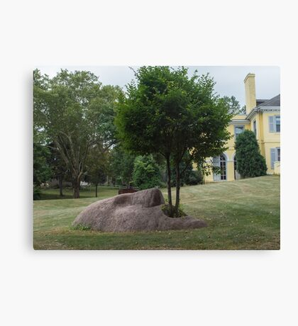 Tree Mouth Canvas Print