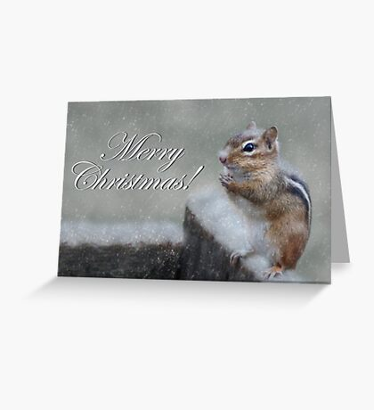 Chippy Christmas Greeting Card