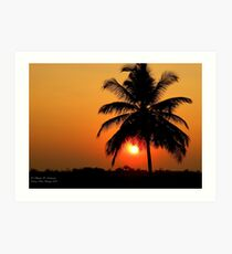 Palm Sunset Art Print
