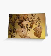 Beauty of Dry Leaf! Greeting Card