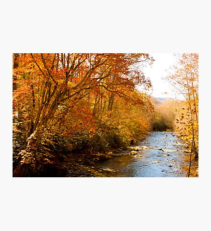 Creek! Photographic Print