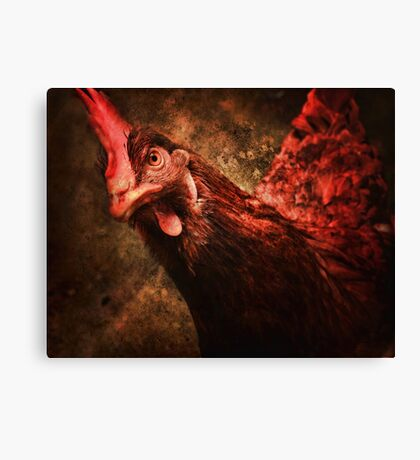 Who ya calling a bird brain? Canvas Print