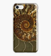An Ancient Treasure V iPhone Case/Skin