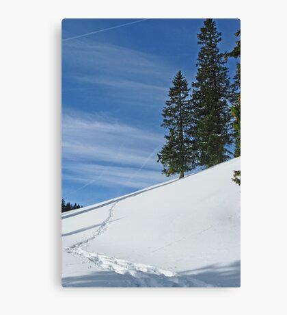 Alps 2 Canvas Print