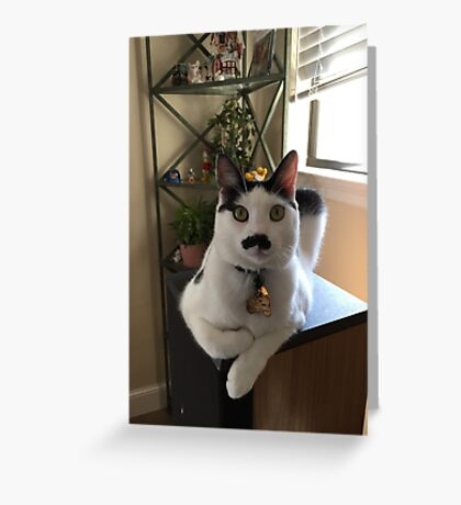 Mustache Cat on Stereo  Greeting Card