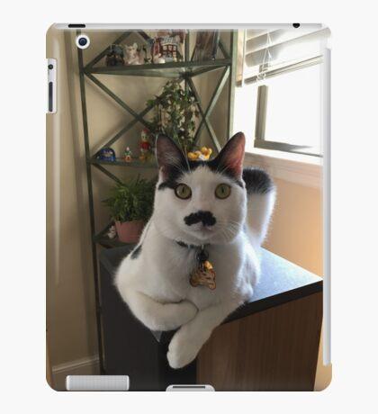 Mustache Cat on Stereo  iPad Case/Skin