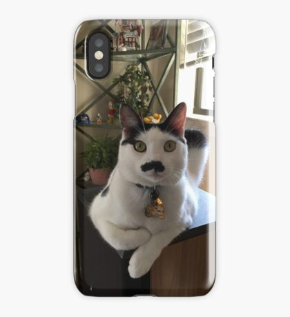 Mustache Cat on Stereo  iPhone Case