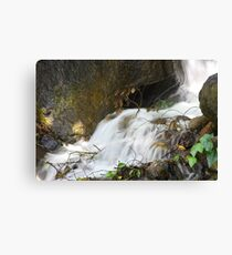 Moving Water Canvas Print
