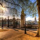 Kanada-Gatter-Grün-Park London von Londonimages