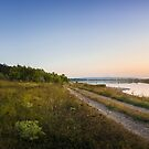Rural panoramic landscape by psychoshadow