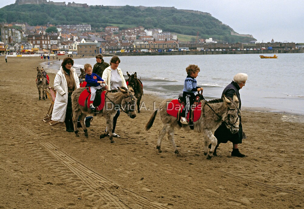 Donkey ride on Scarborough beach, England, UK, 1980s by David A. L. Davies