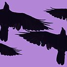 «Cuervo nocturno» de Whisperingpeaks