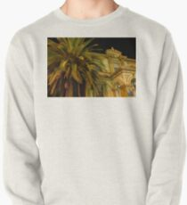money doesn't grow on trees Pullover