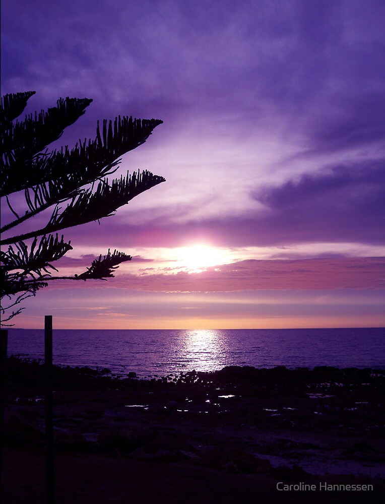Fantasy Sunset by Caroline Hannessen