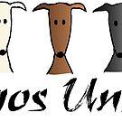 Galgos United by lobitos