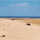 MOZAMBIQUE'S  WHITE SANDY BEACHES, AT LOW TIDE von Magriet Meintjes