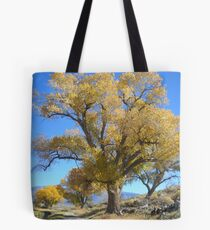 Cloudless Tote Bag