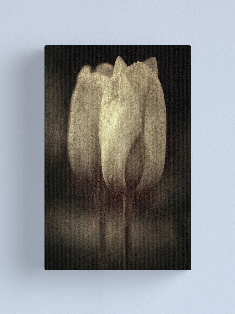 Alternate view of Vintage Tulips in Color Canvas Print