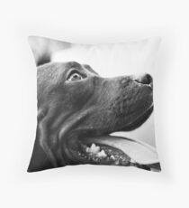 Pitbull Love Throw Pillow