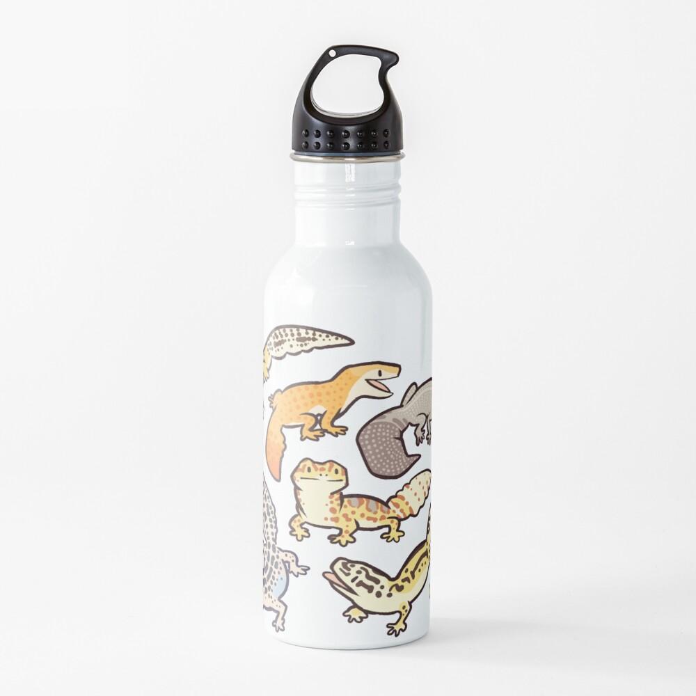 chub gecko babies Water Bottle