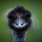 Look into my Eyes by Justin Atkins