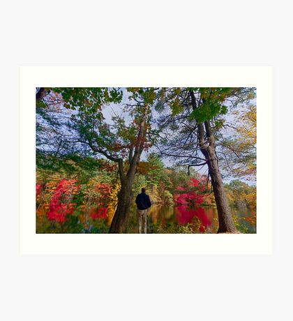 Colorfull fall in Dover, MA  Art Print
