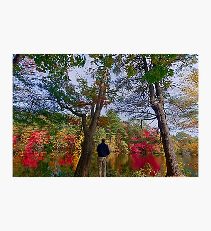Colorfull fall in Dover, MA  Photographic Print