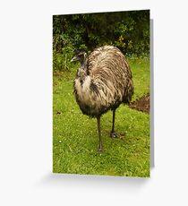 Old Man Emu Greeting Card