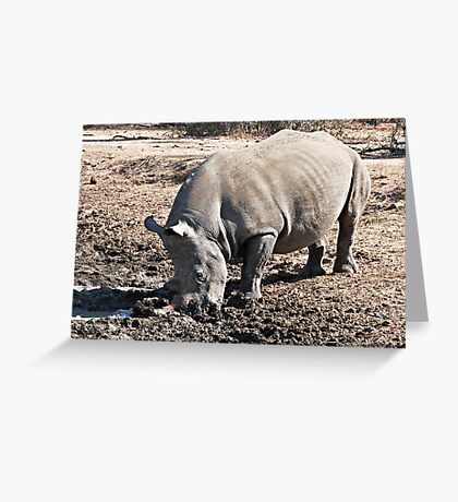 Who Called Me a Stick In the Mud? Greeting Card