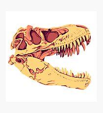 Tyrannosaurus Rex Skull Photographic Print