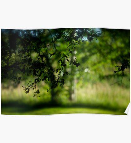 Green Summer -  Déjà vu . Brown Sugar Storybook .. Featured in Going Green. Poster