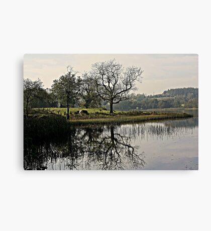 Town Lake Canvas Print
