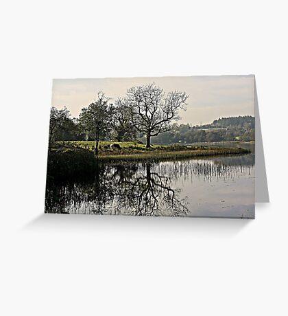 Town Lake Greeting Card