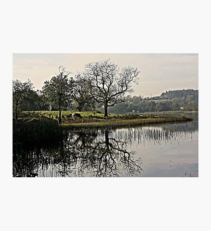 Town Lake Photographic Print
