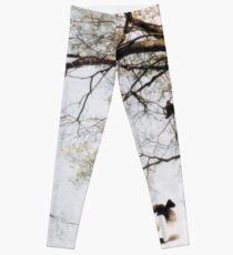 The Winged Tree © Vicki Ferrari Leggings