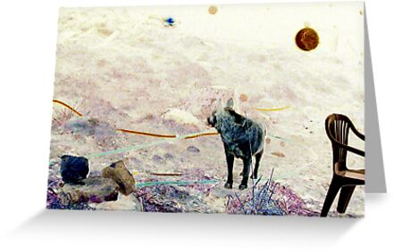 A boy, an orb and his dog by PaulCoover