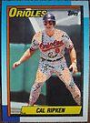 500 - Cal Ripken by Foob's Baseball Cards