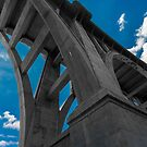 Colorado Street Bridge by photosbyflood
