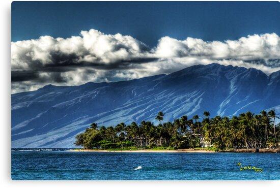 Mount Haleakalā Maui by George Lenz