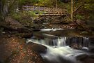 Footbridge and Cascade by Aaron Campbell